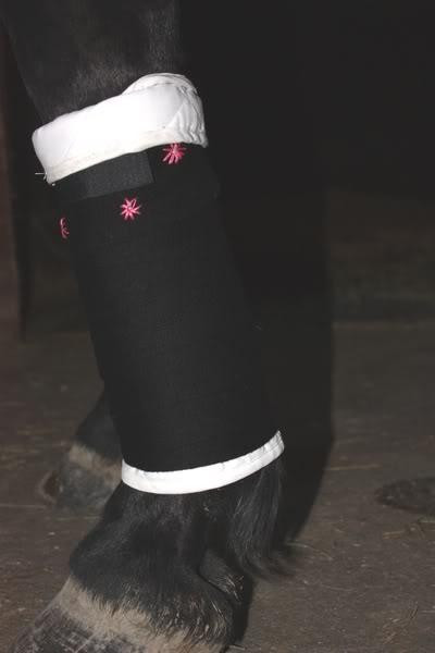 Les bandages IMG_4196