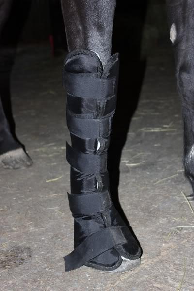 Les bandages IMG_4197