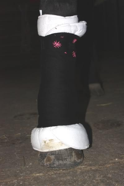 Les bandages IMG_4199