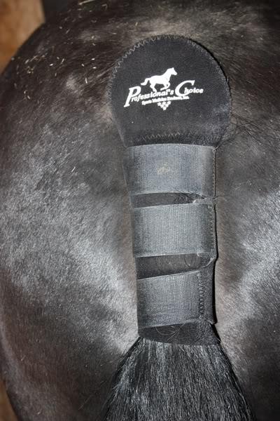 Les bandages IMG_4201
