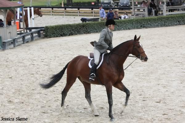 19 mars 2009, CSI 5* winter equestrian festival, west palm b IMG_3330