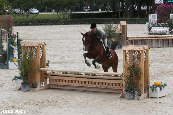 19 mars 2009, CSI 5* winter equestrian festival, west palm b IMG_3331