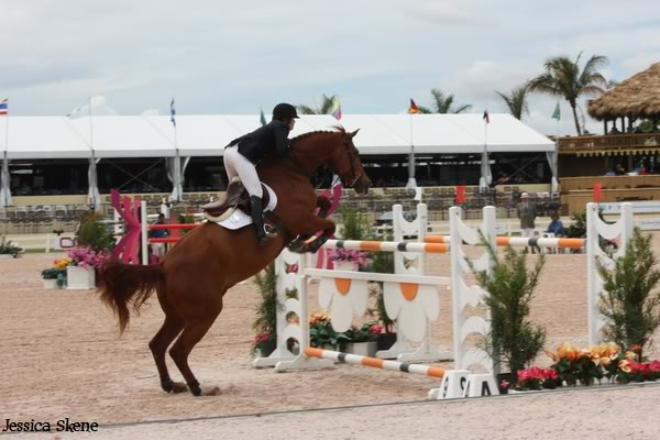 19 mars 2009, CSI 5* winter equestrian festival, west palm b IMG_3335