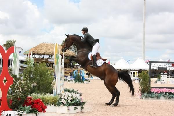 19 mars 2009, CSI 5* winter equestrian festival, west palm b IMG_3359