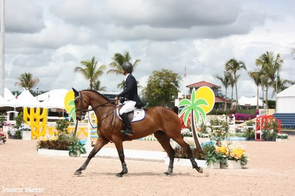 19 mars 2009, CSI 5* winter equestrian festival, west palm b IMG_3386