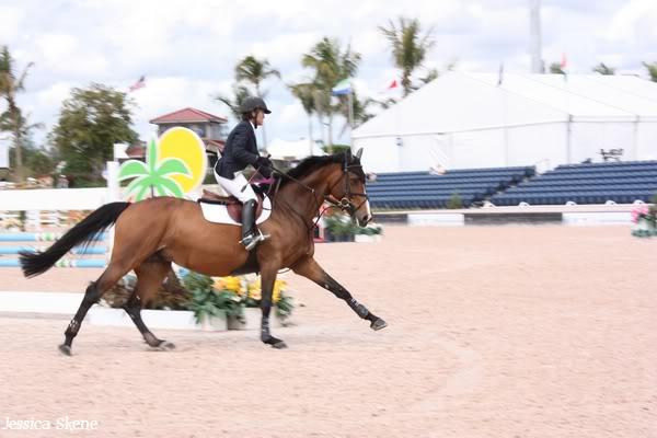 19 mars 2009, CSI 5* winter equestrian festival, west palm b IMG_3393