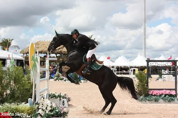 19 mars 2009, CSI 5* winter equestrian festival, west palm b IMG_3418