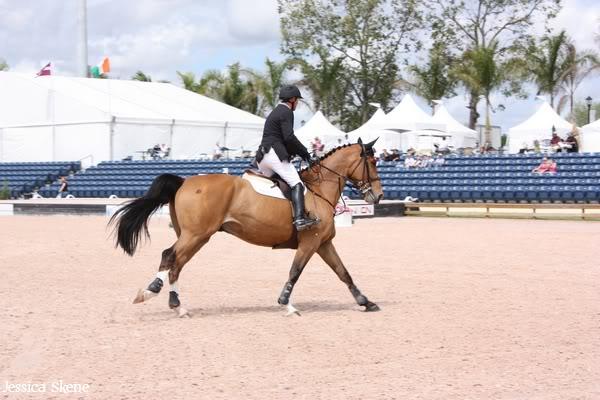 19 mars 2009, CSI 5* winter equestrian festival, west palm b IMG_3430