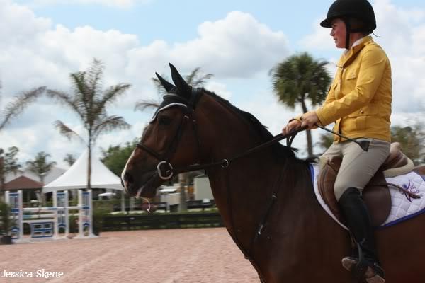19 mars 2009, CSI 5* winter equestrian festival, west palm b IMG_3449