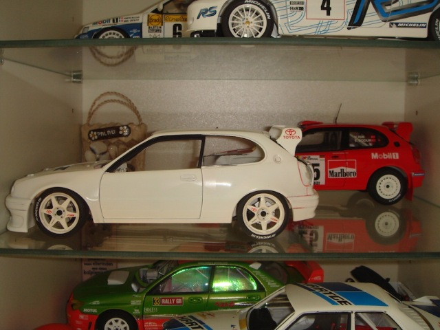 Toyota Corolla WRC, 2000 Rally Catalunya, Serkan Yazici, Smoking Kills, 1/18 DSC08768