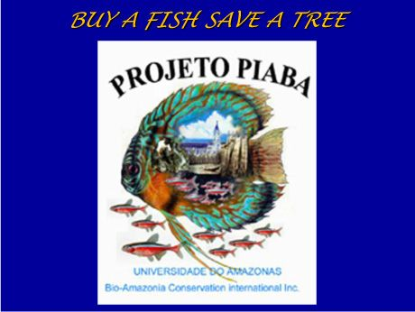 Buy a Fish Save a Tree - Project Piaba PiabaOATA2008-1