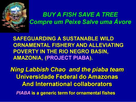 Buy a Fish Save a Tree - Project Piaba PiabaOATA2008-2