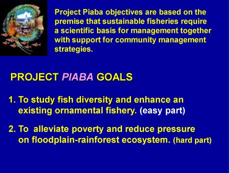 Buy a Fish Save a Tree - Project Piaba PiabaOATA2008-20