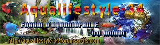 Fact Sheet on the maintenance of shrimp. Aqualifestyle-world66MINI