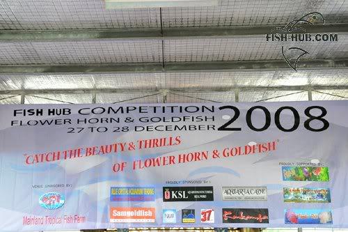 Fish-Hub Competition 2008 - Flower Horn & Goldfish Fishhub20081