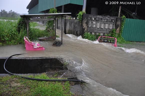 Inondation Sarawak  (Bornéo) Flood3-swk290109