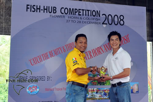 Fish-Hub Competition 2008 - Flower Horn & Goldfish Prize8