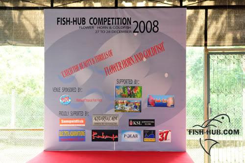 Fish-Hub Competition 2008 - Flower Horn & Goldfish Setup5