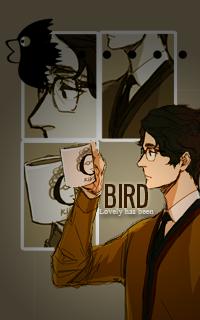photo birdlovelyhasbeen_zpsf0e73bd9.png