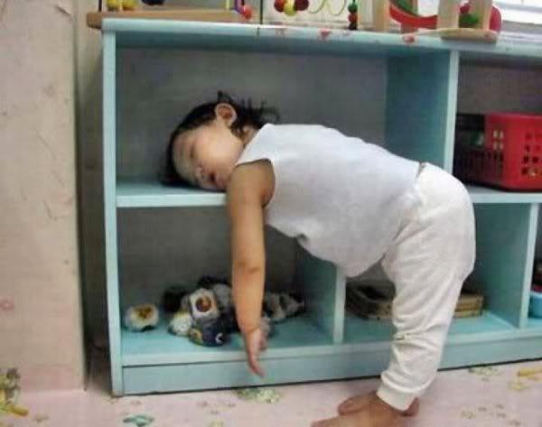 sleeping time..anywhere!!! Sleep_anywhere_they_feel_like_it_10