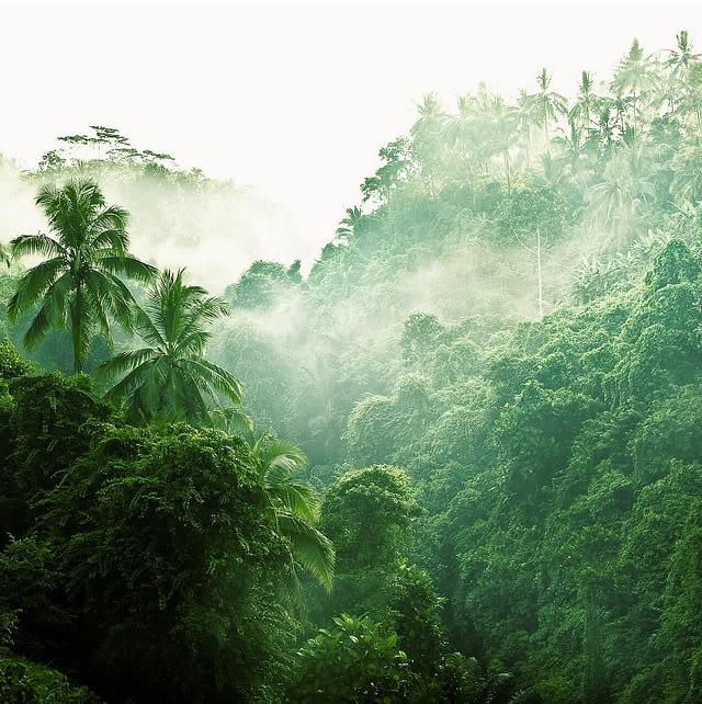 10 Consejos para tus fotos de Paisajes y Relieves Landscape_08