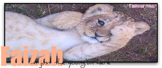 ¤¤¤Land of the Savannah¤¤¤ - Page 2 Seaview-lion-cub-pic