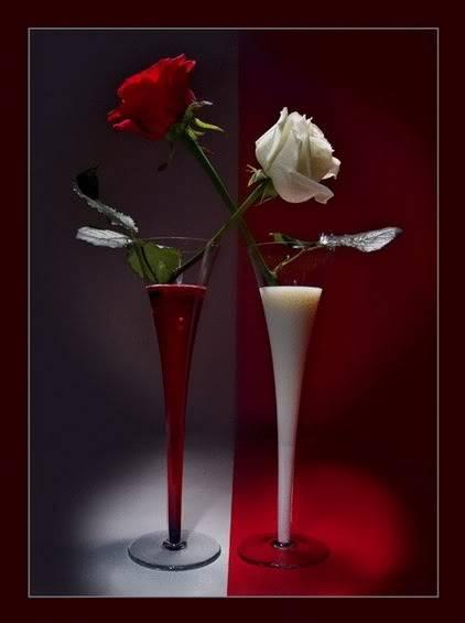 LA MULTI ANI 8 MARTIE!!! - Pagina 2 Trandafiri