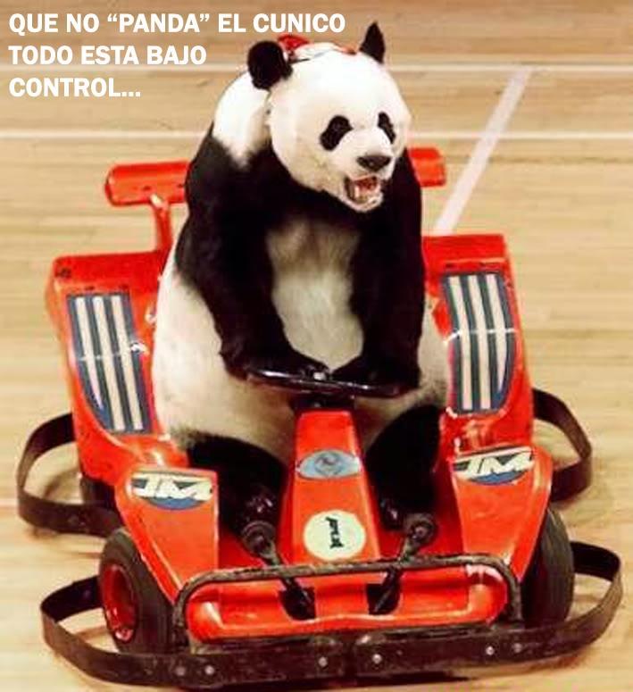 PARA QUE SONRIAS UN POCO... Funny-pictures-panda-racer-17j