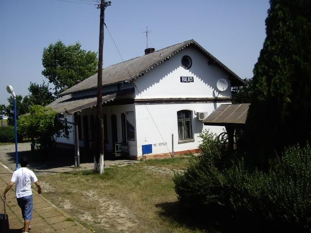 907 : Rosiori Nord - Costesti - Pagina 2 IMGP0274