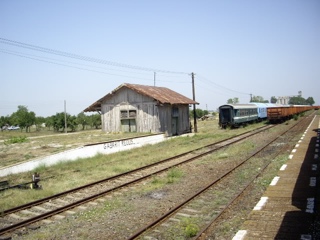 907 : Rosiori Nord - Costesti - Pagina 2 IMGP0275