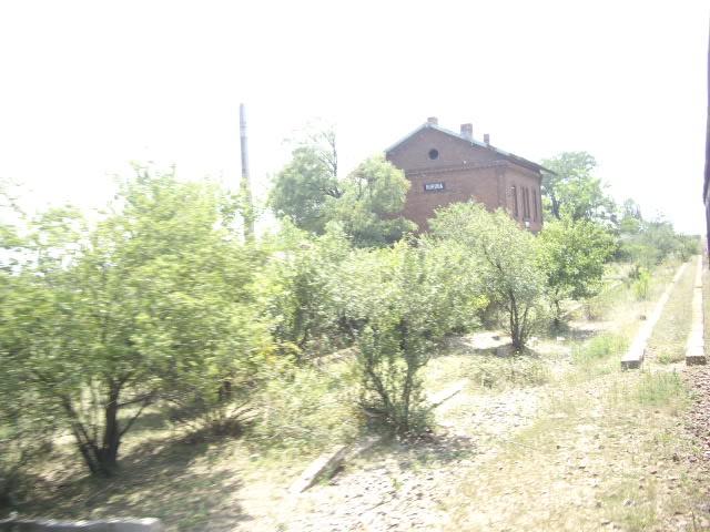 907 : Rosiori Nord - Costesti - Pagina 2 IMGP0283