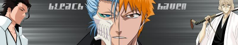 Bleach Haven