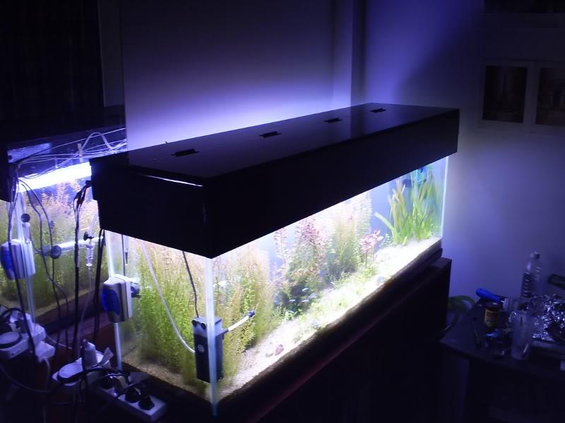 Consulta para hacer mi propia tapa de acuario S4031185