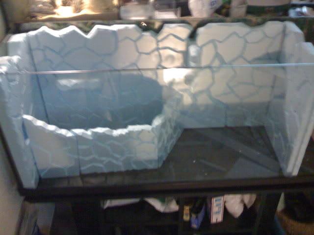 recherche d'information pour un projet Aquaterrarium dans un 240L IMG_0077