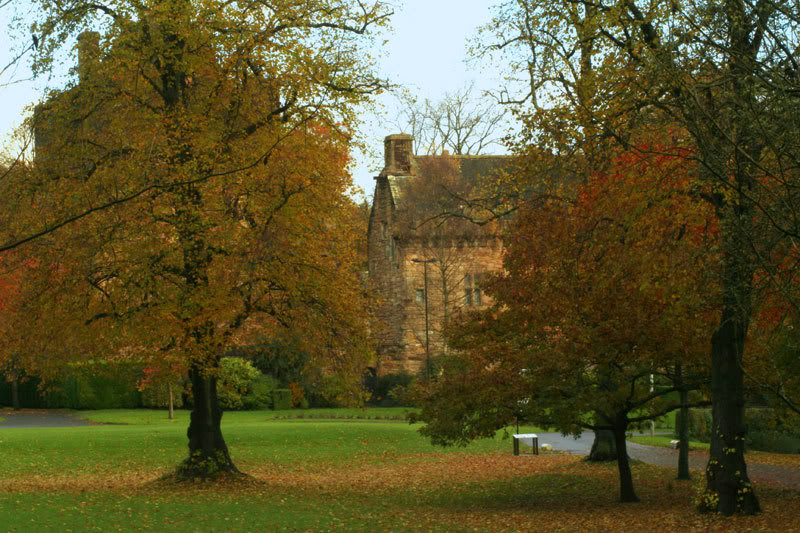 more of autumn Dean-castle-autumn