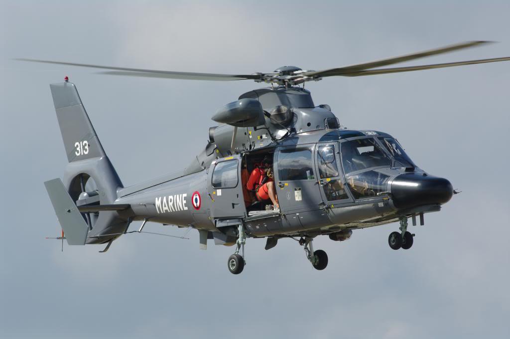 SA-365F-1  Kittyhawk 1/48 IMGP6456_zpsbbd3b5b8