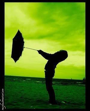 Vì anh là gió....đừng trách gió vì gió vô tình.... 360313747_740fd2b215