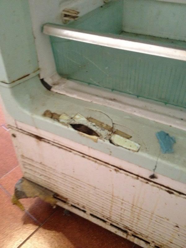 Restauro frigorifero anni 50... IMG_1020_zps8b98fe36