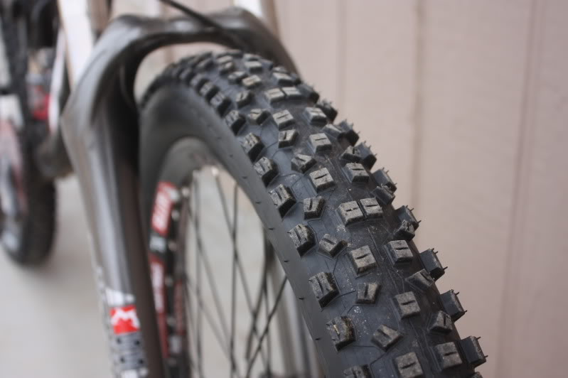 Schwalbe Hanz Dampf Initial Review IMG_0174