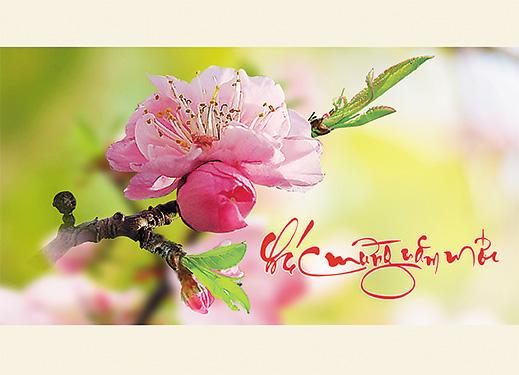 Chiếc nón bài thơ - Page 13 ChucXuan1_zpskcp32ovz