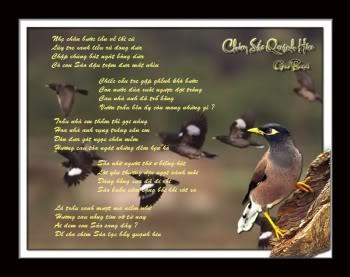 Chiếc nón bài thơ - Page 4 Chimsaoquanhhiu