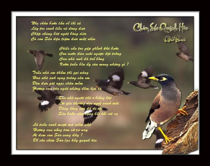 Tranh thơ Gió Bụi - Bạn thơ tạo dựng Chimsaoquanhhiu_GB_zpsjrvss8sp