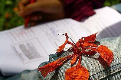 Chiếc nón bài thơ - Page 4 Hanho1_zps7a5fb39e