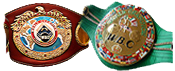 WBC & WBO UNDISPUTED MW CHAMPION