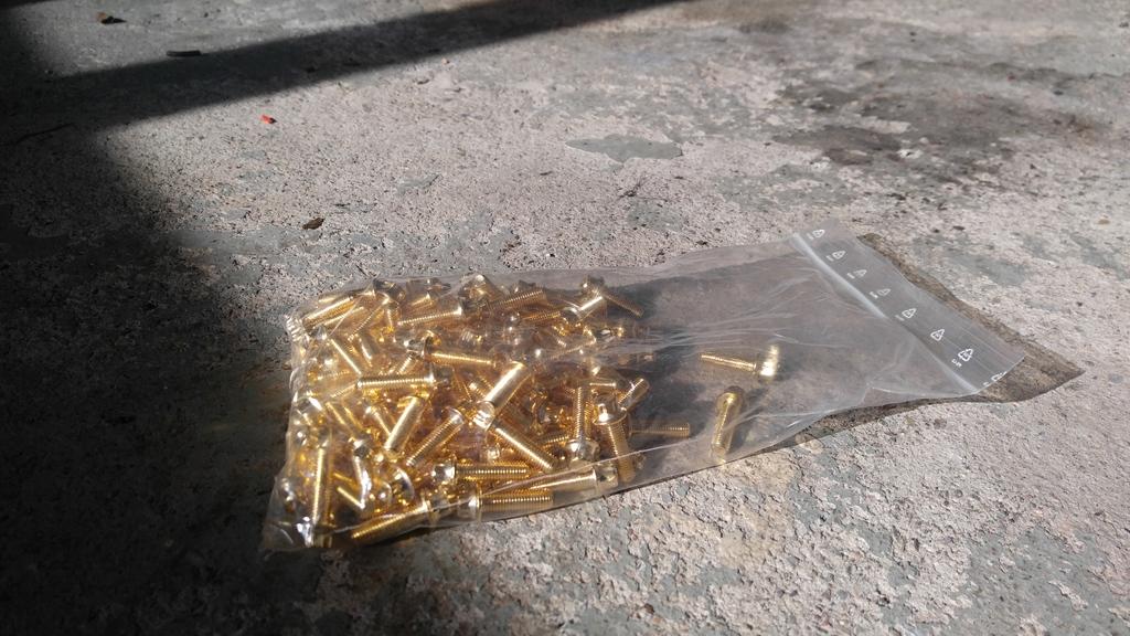 Kultaiset kehäpultit 130 kpl M7x24 20170422_155627