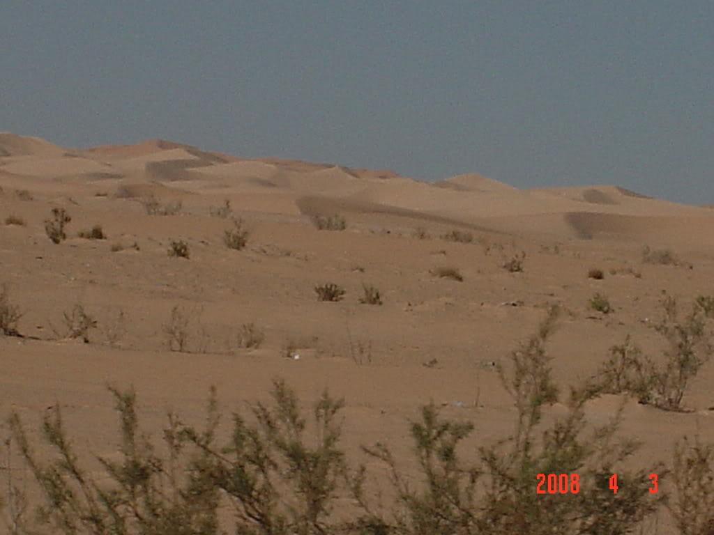 ورقلة مدينة الساندروز DSC02678