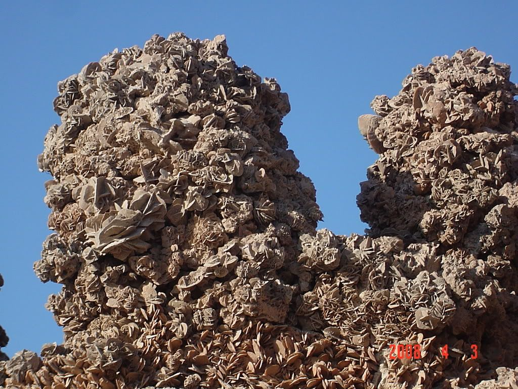 ورقلة مدينة الساندروز DSC02682