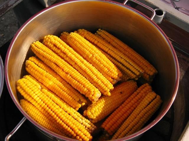Zatvorili mu obrt: 5 kukuruza mora platiti čak 21.000 kuna Kukuruz