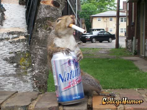 It's alive!...It's Alive!!...IT'S ALIVE!!! Squirrel