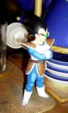 Figurines DBZ (Goku et Vegeta) Th_PICT0182